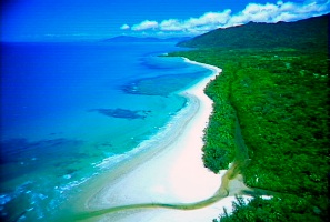 Cape Tribulation - Absolute Paradise At Your Door Step