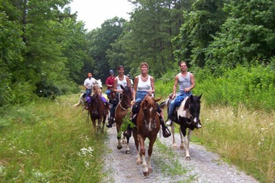 Why Not Let Bohemia Resort Arrange A Relaxing Horse Riding Adventure